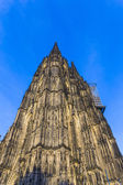 Beautiful dome in cologne  — Stock Photo