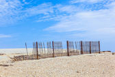 Fence for protection of the dunes at the beautiful natural beach — Stock Photo