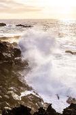 Rough coast with huige waves — Stock Photo