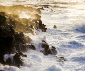 Rough coast with huige waves — Stock Photo
