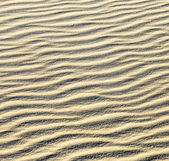 background of sand ripples at the beach  — Stock Photo