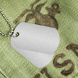 Stock Photo: Dog tags on military uniform