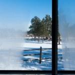 Winter window view — Stock Photo