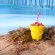 Beach bucket and kelp - Stockfoto