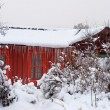 Stock Photo: Red Cabin in Snow