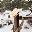 Stock Photo: Wrangler hat and lasso