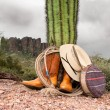 Cowboy items in desert — Stock Photo