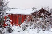 Red Cabin in Snow — Stock Photo