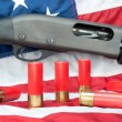 Stock Photo: Shotgun on flag