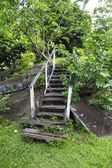 Rotted stairs — Stock Photo