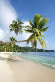 Classic exotic beach — Stock Photo