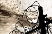 Prison Fence Against Dark Sky — Stok fotoğraf