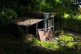 Old shack — Stock Photo