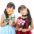 Two little asian girls - Stock Photo