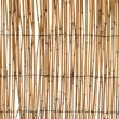 bamboo blind — Stock Photo