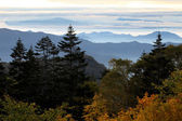 Blue ridge mountains in early morning — Stock Photo