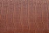 Brown crocodile skin — Foto Stock