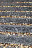 Old stone steps in autumn — Stock Photo