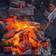 Camp fire — Stock Photo #13409683