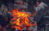 Camp fire — Stockfoto