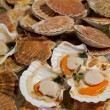 Foto Stock: Opened scallops