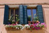 Windows and shutters — Stock Photo