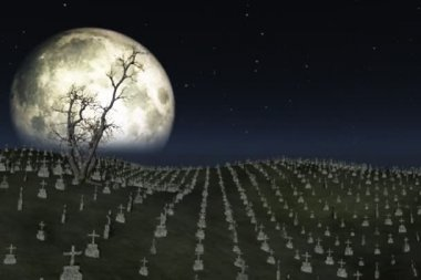 Graveyard with full moon behind,ground fog and tree flowing in the wind