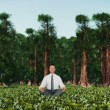 Businessman in Forest Meditating — Stock Video