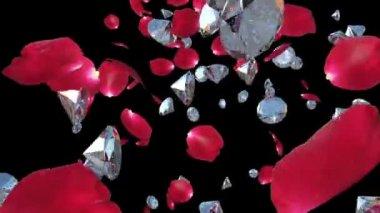 バラの花びらとダイヤモンド ブラック相手に飛んでいます。 — ストックビデオ