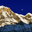 One of the highest peaks of the world Annapurna. — 图库照片