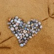 Stock Photo: Heart of shells pierced by an arrow.