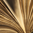 Old Book Fanned Open — Stock Photo