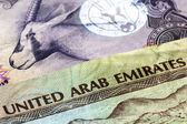 UAE Currency Closeup — Stock Photo