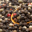 Peppercorns - Stock Photo