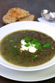 Lentil Soup with Watercress — Stock Photo