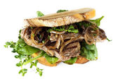 Steak Sandwich with Caramelized Onions and Herbs Isolated — Stock Photo