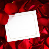 Gift Card on Red Rose Petals — Stock Photo