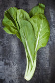 Chard on Slate Overhead View — Stock Photo