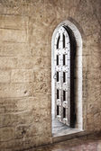 Grunge Gothic Doorway — Stock Photo
