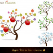 Apple tree four seasons — Stock Vector
