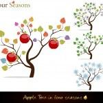Apple tree four seasons — Stock Vector
