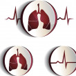 Lungs — Stock Vector #31715509