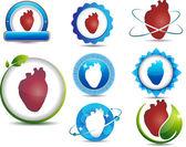Herz-Anatomie-Symbole — Stockvektor