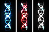 DNA banners — Stock Vector