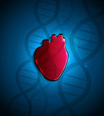 Heart and DNA — Stock Vector