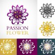 Set of passion flowers — Stock Vector #36721531
