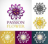 Set of passion flowers — Stock Vector