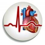 Постер, плакат: Human heart rhythm icon