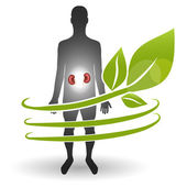 Renal heatlh care concept. Human and kidneys surrounded by green — Stock Vector