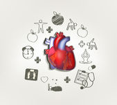 Healthy heart at the middle hand drawn tips around — Stock Vector